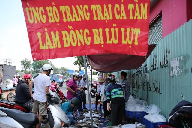 Người dân TP HCM chen nhau mua cá tầm bị ngộp nước - ảnh 2