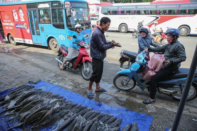 Người dân TP HCM chen nhau mua cá tầm bị ngộp nước - ảnh 3