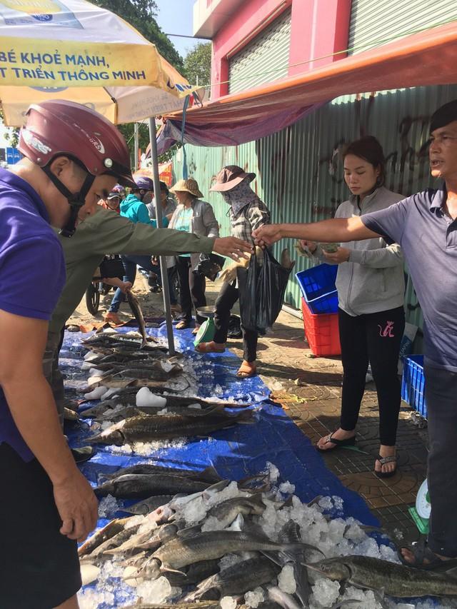 Người dân TP HCM chen nhau mua cá tầm bị ngộp nước - ảnh 14