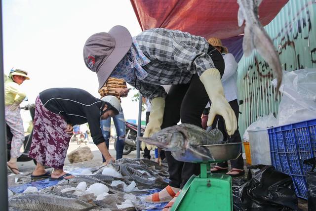 Người dân TP HCM chen nhau mua cá tầm bị ngộp nước - ảnh 6