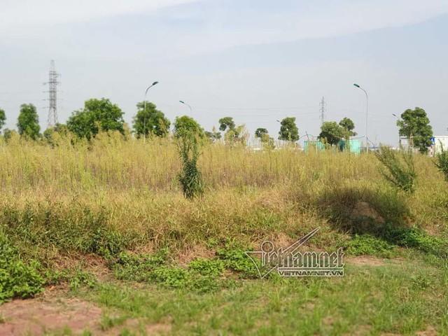 Miếng đất đầy cỏ dại 'chôn' tiền tỷ ở khu đô thị TNR Stars Đồng Văn - Ảnh 7.