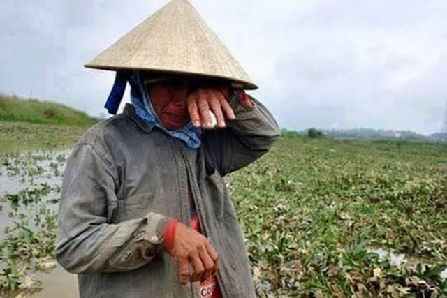 Năng suất lao động: Nông nghiệp chưa bằng 1/10 Malaysia, nửa Thái Lan, công nghiệp dịch vụ chưa xứng tầm động lực tăng trưởng - Ảnh 1.