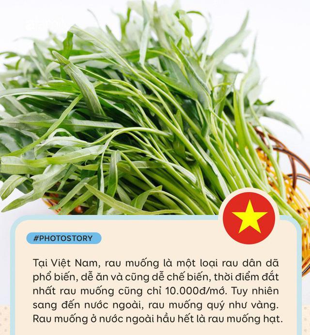 Rau muống ở Việt Nam rẻ bằng cốc trà đá, ra nước ngoài đắt không tưởng - Ảnh 1.