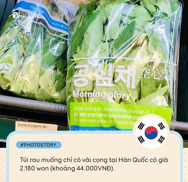 Rau muống ở Việt Nam rẻ bằng cốc trà đá, ra nước ngoài đắt không tưởng - Ảnh 2.