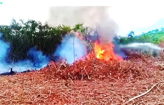 Khuôn viên trường bắn quân sự ở Huế bốc cháy dữ dội - Ảnh 1.