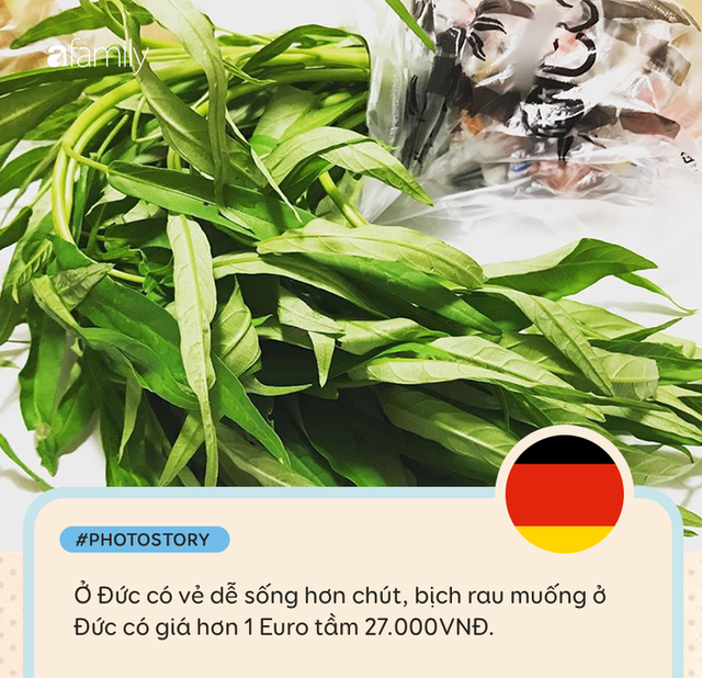 Rau muống ở Việt Nam rẻ bằng cốc trà đá, ra nước ngoài đắt không tưởng - Ảnh 3.