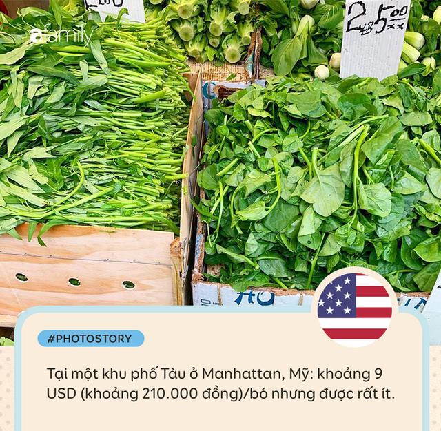 Rau muống ở Việt Nam rẻ bằng cốc trà đá, ra nước ngoài đắt không tưởng - Ảnh 6.