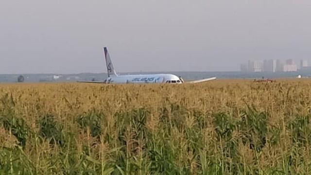 Chùm ảnh: Máy bay chở hơn 230 người nằm giữa cánh đồng ngô - Ảnh 1.