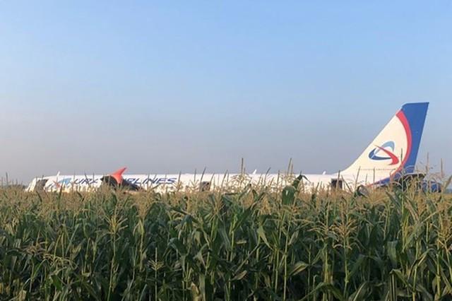 Chùm ảnh: Máy bay chở hơn 230 người nằm giữa cánh đồng ngô - Ảnh 6.