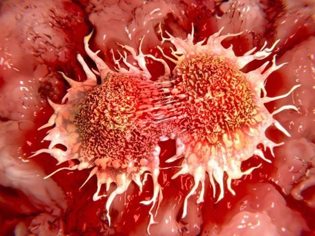 Thứ cho không ai lấy của quả bưởi thực ra chống được ung thư, giảm cân nhanh, trị bách bệnh - Ảnh 3.