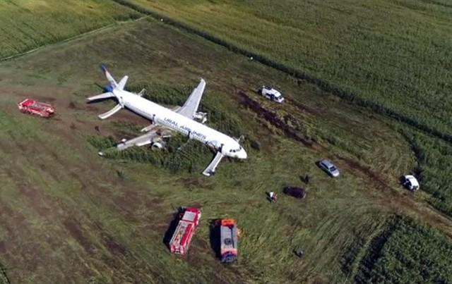Phi công Nga hạ cánh khẩn cấp thần kỳ cứu 234 người được ca ngợi là anh hùng - Ảnh 1.