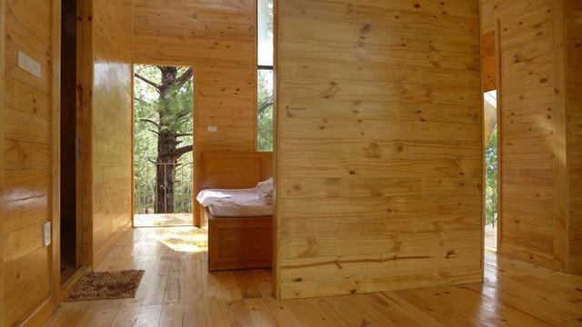 Nhà gỗ ghé lưng đồi, lãng mạn trong thung lũng trong sương Đà Lạt - Ảnh 6.