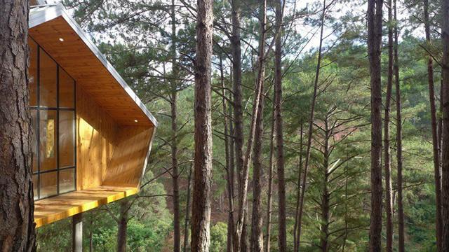 Nhà gỗ ghé lưng đồi, lãng mạn trong thung lũng trong sương Đà Lạt - Ảnh 8.