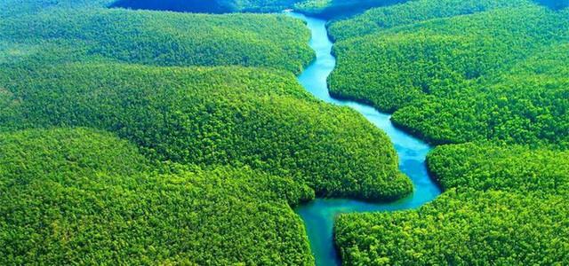 Loạt ảnh gây sốc về rừng Amazon bùng cháy với tốc độ kỷ lục: Khói có thể nhìn thấy từ ngoài không gian, các thành phố bị bao phủ mù mịt như tận thế - Ảnh 15.