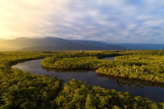 Loạt ảnh gây sốc về rừng Amazon bùng cháy với tốc độ kỷ lục: Khói có thể nhìn thấy từ ngoài không gian, các thành phố bị bao phủ mù mịt như tận thế - Ảnh 16.