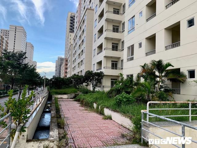 3.790 căn hộ giá gần 10.000 tỷ đồng bị bỏ hoang 4 năm tại TP.HCM - Ảnh 4.