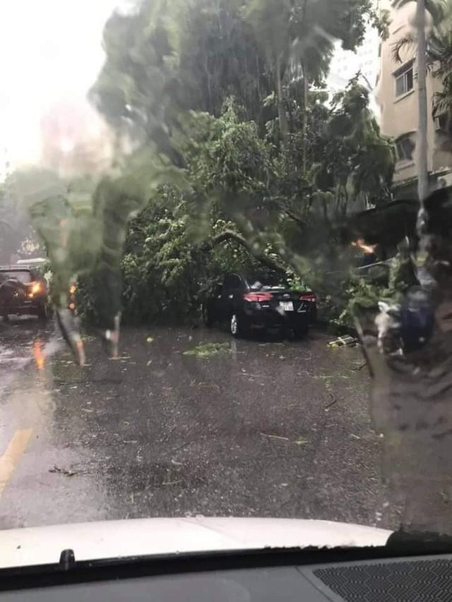 [Video] Mưa giông bất ngờ đổ ập chiều nay, người dân chung cư bị kéo bật khỏi cửa, cây gãy đè trúng ô tô ở Hà Nội - Ảnh 2.