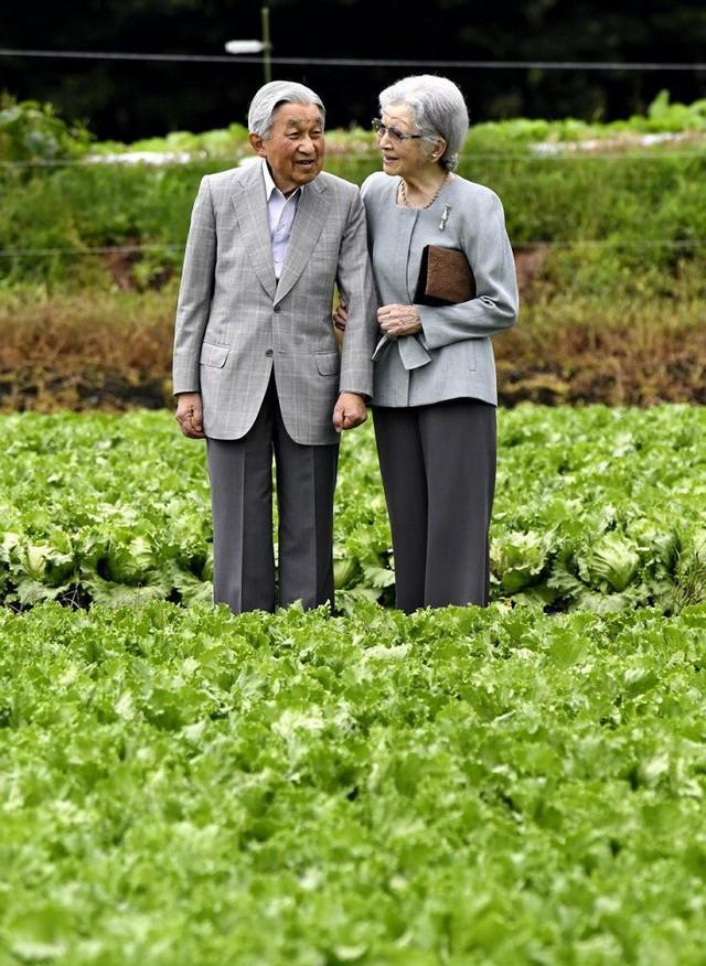 Ngôn tình ngoài đời thực: Vợ chồng cựu Nhật hoàng nắm tay nhau hưởng thú vui tuổi già, 60 năm tình yêu vẫn vẹn nguyên - Ảnh 3.