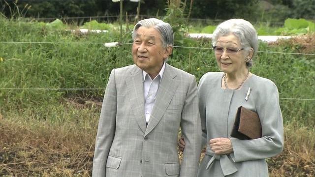 Ngôn tình ngoài đời thực: Vợ chồng cựu Nhật hoàng nắm tay nhau hưởng thú vui tuổi già, 60 năm tình yêu vẫn vẹn nguyên - Ảnh 4.