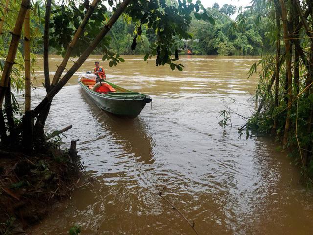 Báo quốc tế nói gì về vườn quốc gia Cát Tiên? - Ảnh 3.