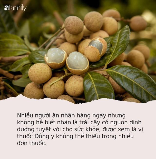 Quả nhãn là vị thuốc quý, xứng đáng được người Việt sủng ái nhưng 4 nhóm người này thèm mấy cũng không nên ăn - Ảnh 1.