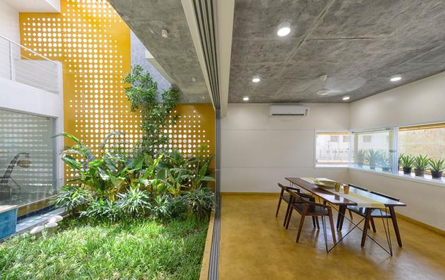 """Ngôi nhà gần gũi với thiên nhiên nhờ có """"vườn đặt trong nhà"""" - Ảnh 5."""