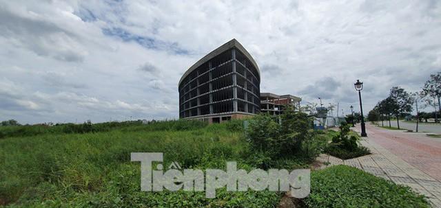 Cỏ mọc um tùm, bò dạo chơi tại Khu công nghệ cao TPHCM đang dính sai phạm - Ảnh 6.