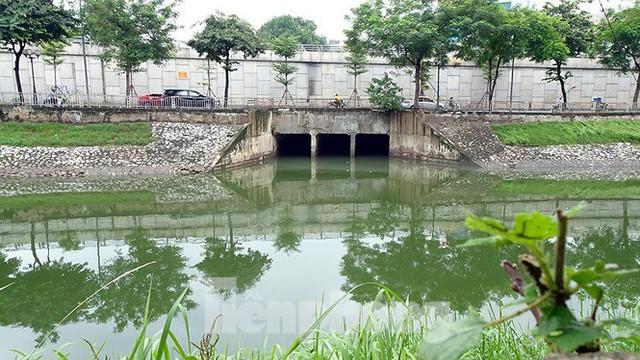 Nước sông Tô Lịch trong veo sau bão, cần thủ thỏa sức buông câu bắt cá - Ảnh 1.