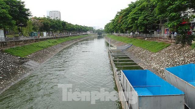 Nước sông Tô Lịch trong veo sau bão, cần thủ thỏa sức buông câu bắt cá - Ảnh 11.