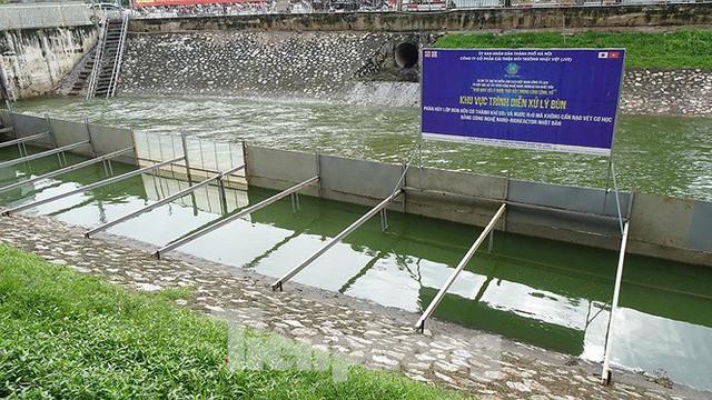 Nước sông Tô Lịch trong veo sau bão, cần thủ thỏa sức buông câu bắt cá - Ảnh 13.