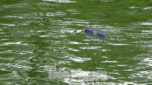 Nước sông Tô Lịch trong veo sau bão, cần thủ thỏa sức buông câu bắt cá - Ảnh 14.