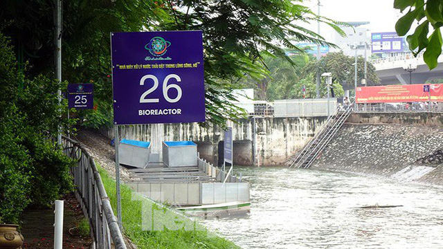 Nước sông Tô Lịch trong veo sau bão, cần thủ thỏa sức buông câu bắt cá - Ảnh 4.