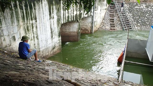 Nước sông Tô Lịch trong veo sau bão, cần thủ thỏa sức buông câu bắt cá - Ảnh 5.