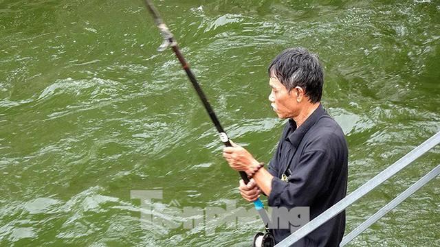 Nước sông Tô Lịch trong veo sau bão, cần thủ thỏa sức buông câu bắt cá - Ảnh 8.