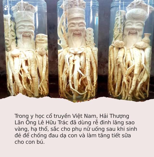 """Sự thật về loại """"nhân sâm của người nghèo"""", trị bách bệnh đang được người Việt săn đón nhiều nhất - Ảnh 1."""