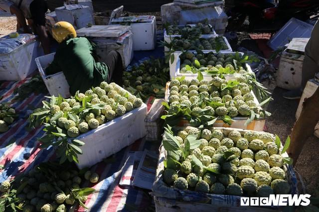 Chợ na lớn nhất miền Bắc tấp nập vào mùa - Ảnh 5.