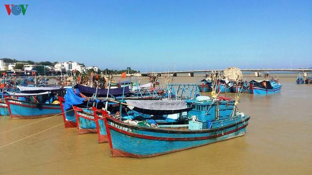 Nhiều chủ tàu cá ở Nam Trung bộ bị ngân hàng kiện đòi nợ - Ảnh 1.