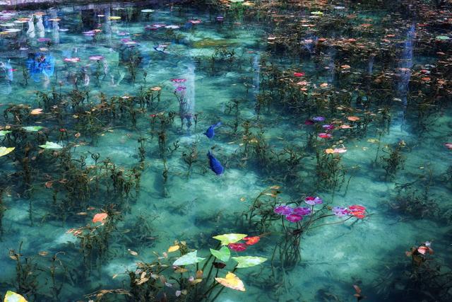 Hồ Nhật Bản đẹp như tranh sơn dầu của Monet: 20 năm trước vô danh, không ai biết đến, giờ thành địa điểm hút khách bậc nhất xứ hoa anh đào - Ảnh 8.