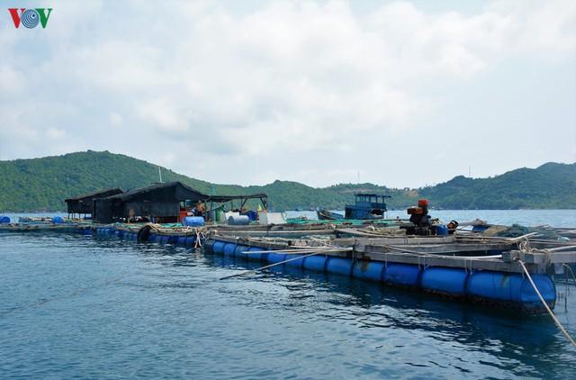 Khám phá nghề nuôi cá lồng bè thu tiền tỷ ở Nam Du - Ảnh 3.