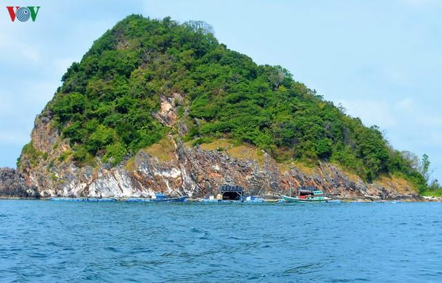Khám phá nghề nuôi cá lồng bè thu tiền tỷ ở Nam Du - Ảnh 4.