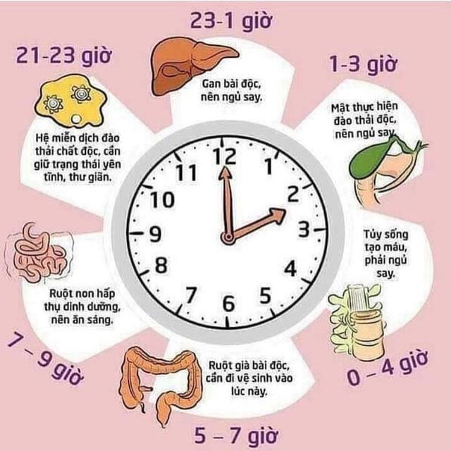 4 quy tắc bất di bất dịch khi đi ngủ do chính thần y Hoa Đà để lại: 1 giấc ngủ đúng bằng cả trăm thang thuốc bổ - Ảnh 1.
