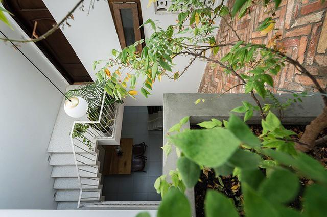 Ngôi nhà nằm sâu trong hẻm ở Sài Gòn đẹp ngỡ ngàng - Ảnh 2.