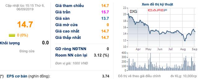 Đất Xanh (DXG): Chủ tịch Lương Trí Thìn đã mua thêm 41 triệu quyền mua cổ phiếu - Ảnh 1.