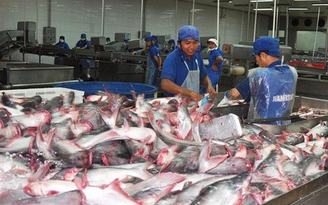 Xuất khẩu nông, lâm, thủy sản 8 tháng đầu năm giảm so với cùng kỳ năm trước