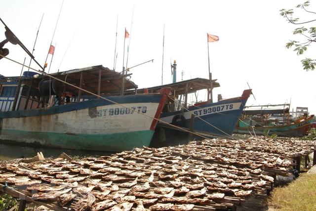 [Photo] Làng khô xứ biển Trần Đề chuẩn bị nguồn hàng phục vụ Tết - Ảnh 2.