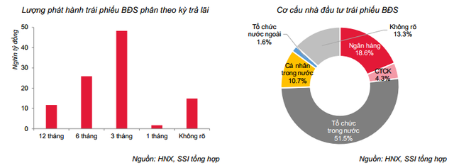 Bùng nổ kênh TPDN: Lãi suất trung bình 8,8%/năm, nhóm BĐS chi trả cao nhất – hơn 10%/năm - Ảnh 7.