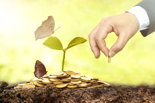 Bước nhảy vọt của đầu tư bền vững tại Đông Nam Á - Ảnh 1.