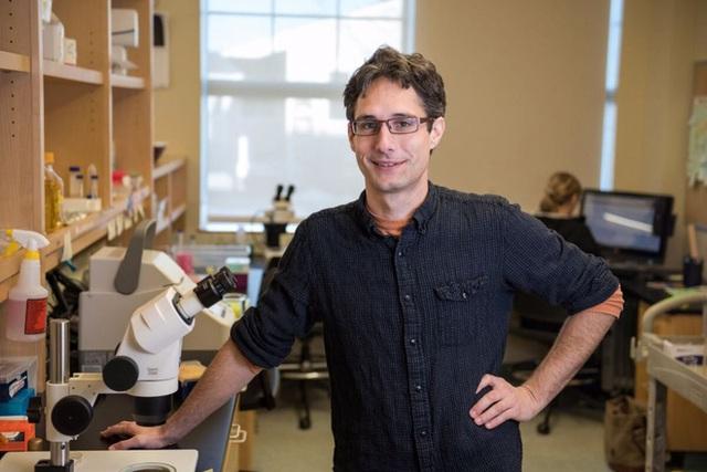 Chỉnh sửa gen giúp các nhà khoa học tăng 500% tuổi thọ của giun, tương đương 400 năm ở con người - Ảnh 3.