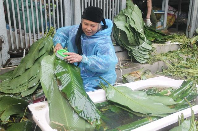 Nghề rửa lá dong hái ra tiền ở công xưởng bánh chưng lớn nhất miền Bắc - Ảnh 3.