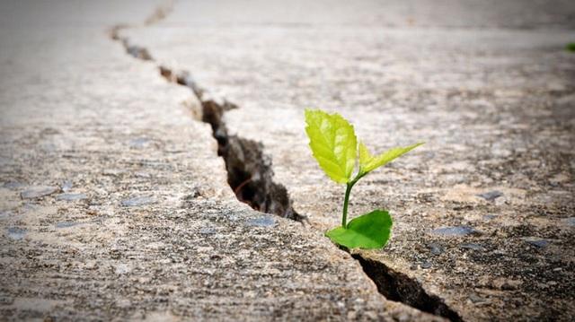 Trước khi bước sang tuổi 30, bạn nhất định phải tích lũy những bài học quý giá này: Cuộc đời là hành trình chứ không phải cuộc đua tốc độ! - Ảnh 2.